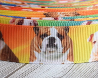 Bulldog ribbon - Bulldog puppy - 3 or 5 yard lot - Rainbow bulldog - Dog ribbon - Dog breeds - DIY bulldog bow - DIY bulldog crafts - Crafts