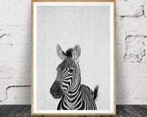 Zebra Print, Nursery Animal Wall Art, Kids Room Printable Instant Digital Download, Black and White Safari Decor, Modern Minimalist Photo