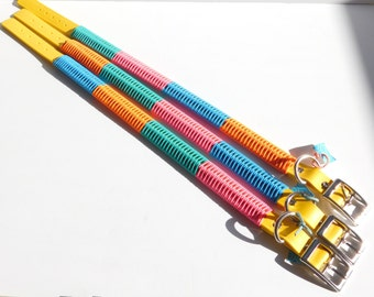 Large/Extra Large Multicolored Collars