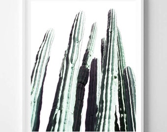 Cactus print, Desert art, Minimalist, Nature photo, Modern art, Wall art decor, Digital art, Printable art, Digital Instant Download 16x20