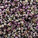 Miyuki 8/0 Round Seed Beads - Crystal Magic Purple (Ref. #MCZ-8-55015-0), Japanese seed beads, Round Rocailles, Unique Czech Coating