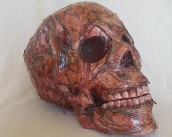 Harold (Zombie Skull)