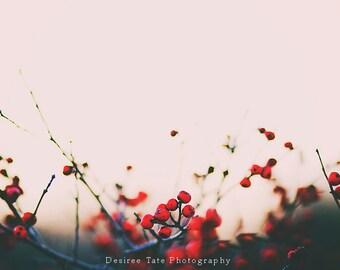 Berries print, wall art, home all decor print, photography print