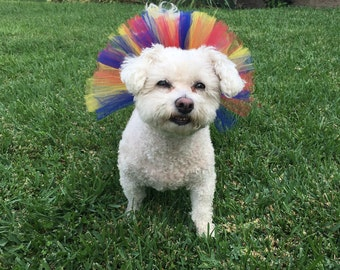 Snow White Inspired Dog Tutu, Pet Tutu,Dog Skirt,Dog Clothes,Dog Accessories,Cute Dog Outfit,Tutus for Dogs,Dog Costume,Red Yellow Blue Tutu