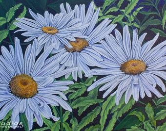 White Daisy Giclee Print from Original Acrylic Painting