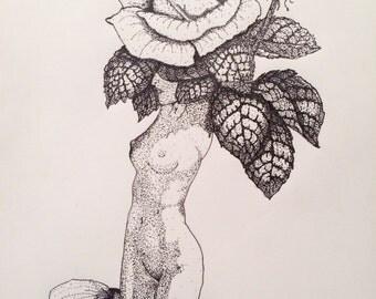Rose As sweet