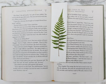 Real botanical bookmark with pressed fern