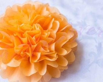APRICOT / 1 tissue paper Pompoms,single pompom,nursery room decoration, baby shower,wedding,birthday, party, engagement, bridal shower