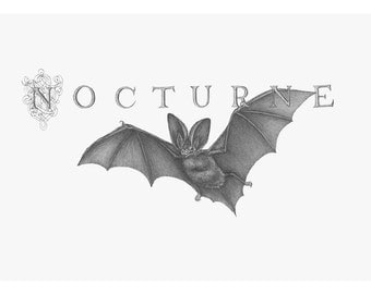 "5.5"" x 9"" Limited Edition Giclee Print of Original Illustration of ""Nocturne"""