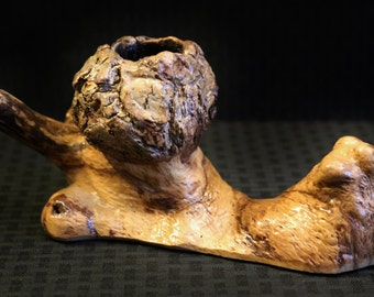 Oak Burl Wood Conversation Piece