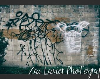 Street Photo, Graffiti Photo, Brick Wall Photo, Graffiti on Wall Photo, Urban City Image, City Photo, Urban Photo, Grungy Wall Photo