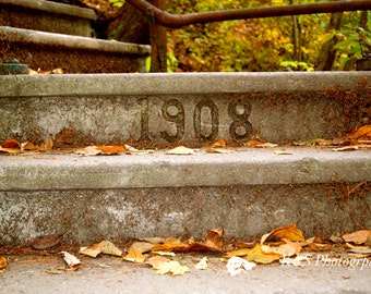 Fall, Steps, 1908, Nature Photography