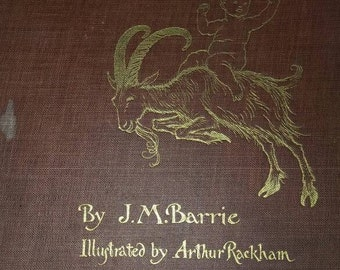 Peter Pan in Kensington Gardens Book. First Edition First Print. 1906. J M Barrie. Arthur Rackham Art
