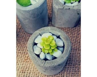 Mini Cement Succulent / Cactus Jar - Round