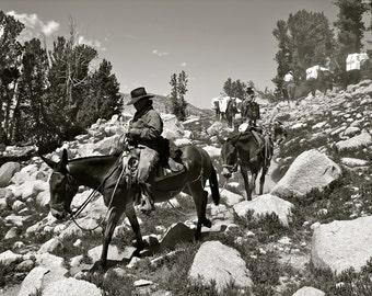 Yosemite Cowboys (High Sierra Mule Train)