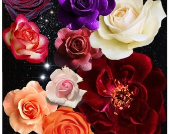 Flowers In Outer Space