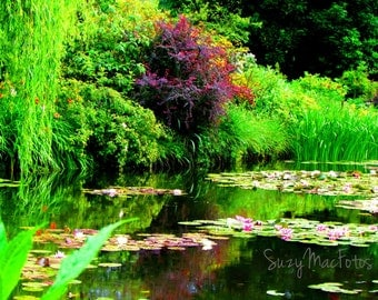 The Lily Pond in Giverny