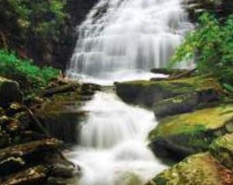 Natural Live Rock from Waterfalls of West Virginia, Fish, Reptile,Terrarium, Grass, Moss, Filter