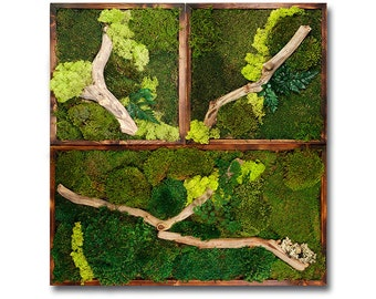 """Plant painting. 3 Piece Moss wall art 36""""x36"""""""