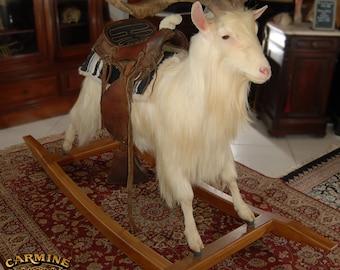 Rocking Taxidermy Goat