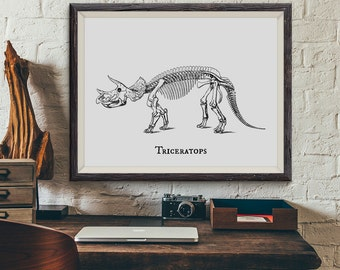 Dinosaur Print, Triceratops Prehistoric Dinosaur Skeleton Fossil Bones Vintage Illustration, Paleontology, Boys Bedroom Wall Art, Not Framed