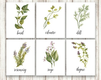 Botanical Print Set, Herb Print Set, Herb Prints, Botanical Prints, Herb Print Sets, Botanical Wall Art, Botanical Print Collection