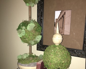 Double ball topiary and sphere moss topiary.