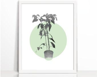 House Plant, Leaves, MintGreen, Watercolor, Scandinavian, Art Printable, Wall Decor, Home Decor, plant