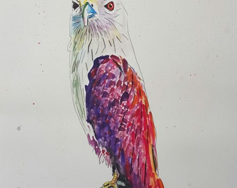 "50% off Art print sale - ""Brahminy kite"""