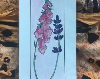 Foxglove & Lavender