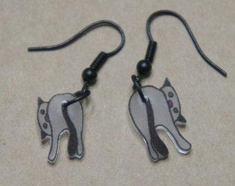 Curious kitty earrings