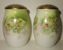 royal rudolstadt prussia floral scene salt pepper shakers set