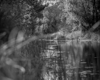 Ojai California - Sespe Wilderness Stream - Exclusive Black & White Exhibition Photograph (downloadable digital image)