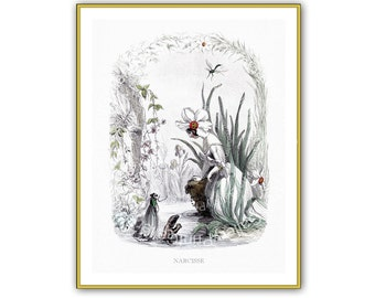 Fleurs Animees Print Grandville Antique Reproduction French Flower Fairy Picture Vintage Home Decor Bedroom Print Engraving 8 x 10 aa 005