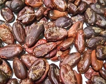 250gr Dry roasting Cocoa Beans export quality