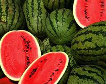 ORGANIC Watermelon Seed Oil Cold Pressed UNREFINED, Undiluted Carrier Oil, Massage Oil, Facial & Body Oil, Anti-inflammatory, Anti-aging
