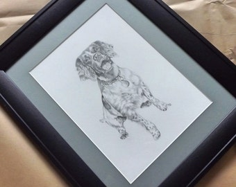 Pet Portrait Commission, Original Pencil Drawing from your Reference Photograph A4