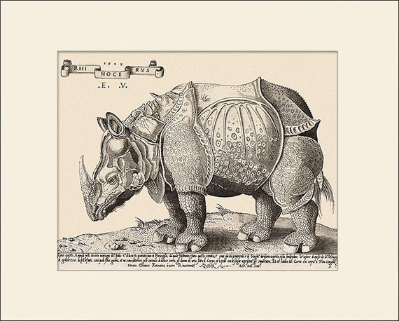 Rhinoceros Print, Durer-Vico, 1548, Art Print with Mat, Antique Natural History Illustration, Wall Art, Wall Decor, Animal Print