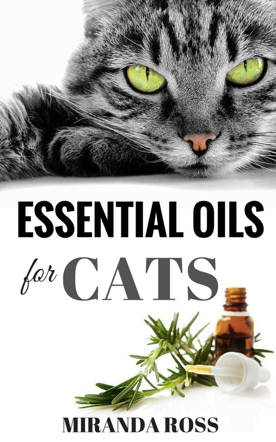 essential oils for cats safe effective therapies and. Black Bedroom Furniture Sets. Home Design Ideas