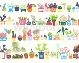 Many succulents and cacti flowerpots - Original promaker illustration