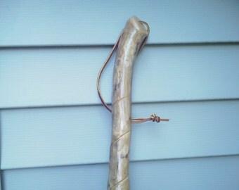 023 Walking stick / cane