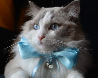 Fancy bow tie for large cats - satin bow tie for cats -  slide on cat bow tie
