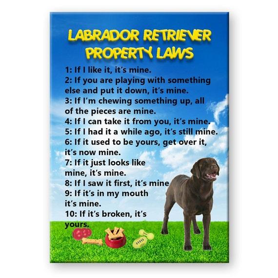 Labrador Retriever Property Laws Fridge Magnet (Chocolate)