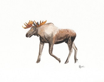 A5 Moose Watercolour Print - Original Handmade Art Print