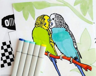 Budgies coloring book printable PDF bird colouring book instant download digital download parrot coloring pages, parakeet or budgerigar pets