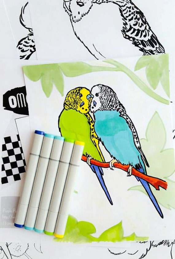 Budgies Coloring Book Printable PDF Bird Colouring Book
