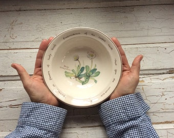 "Vintage Daisy Bowl NORITAKE IRELAND ""The Country Diary Of An Edwardian Lady"""
