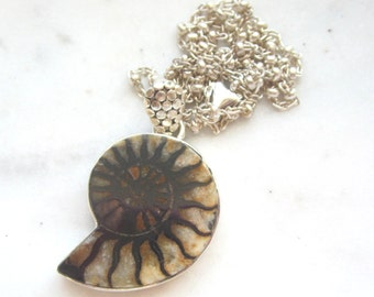 Moroccan Ammonite Fossil Pendant.  Brown and Ivory.  18 Inch Sterling Silver Chain. Fossil Necklace.