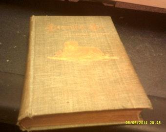 Vintage hardback book Beautiful Joe by Marshall Saunders