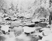 Snow Photography, West Virginia, Glade Creek, Snow Scene, Print, Poster, WV, Black and White Photo, Minimalist, Winter, Freezing, Wall Art